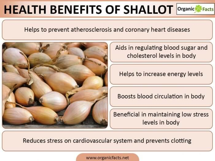 Shallot Health Benefits Infographic Shared By Garlico Marlborough Ltd